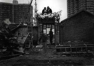 Liu Li Tun by Rong Rong