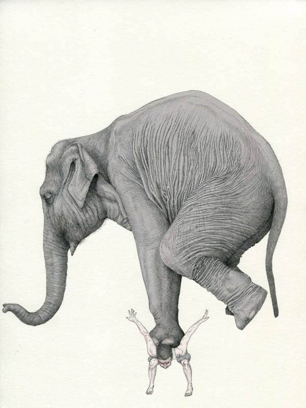 merelle_elephant