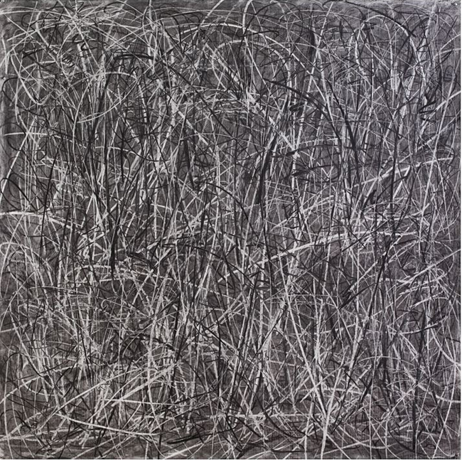 "Judith Foosaner"" Signs of Struggle"" , 2007 charcoal on paper 60 x 60"""