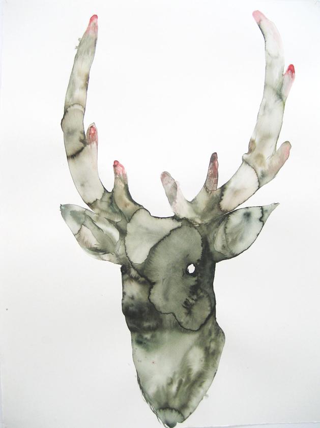 Cecile Granier de Cassagnac Cerf, 2009, aquarelle sur papier courtesy Artegalore,