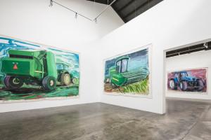 Karen Carson - installation view 2013