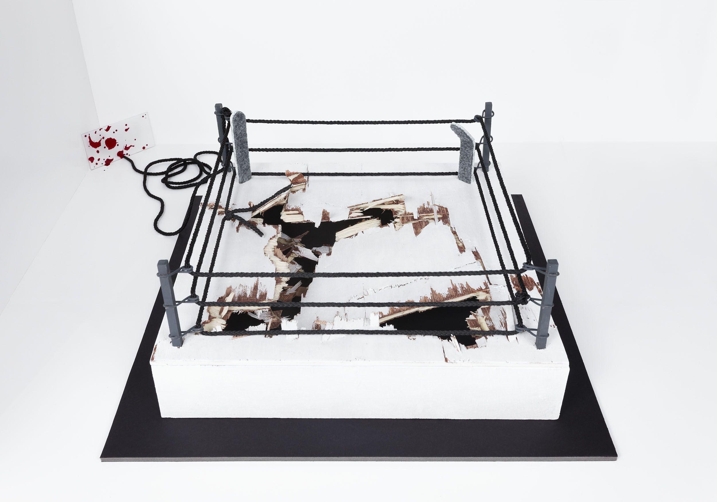 """Dedicated to 'Iron' Mike Tyson and all the fighters around him"", © 2014 Wood, rope, painting, foam and plexiglas ; variable dimensions courtesy the artist"