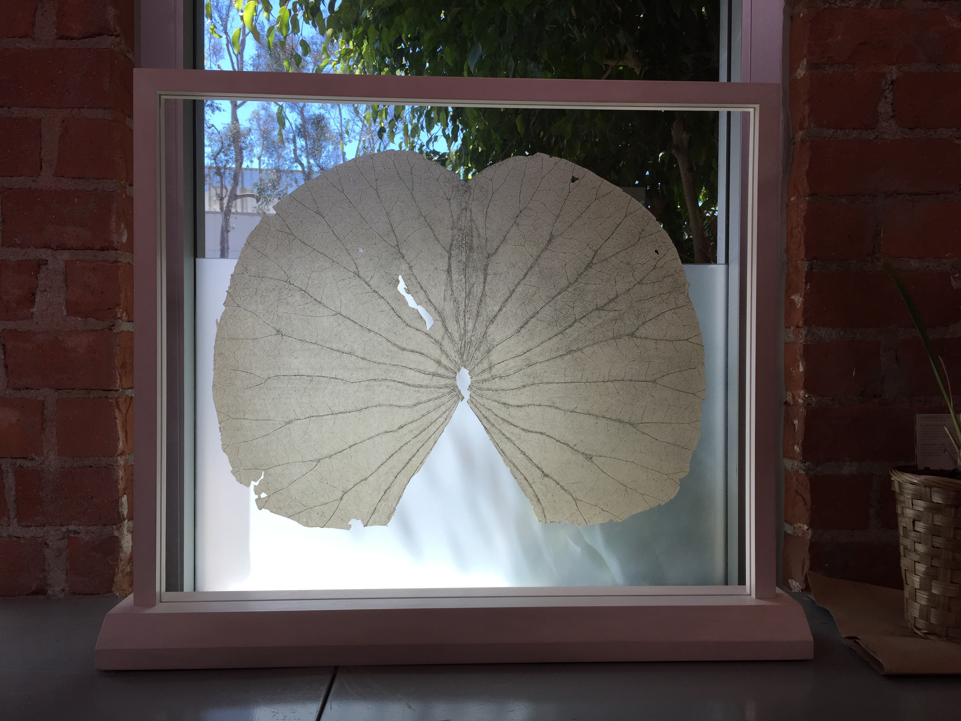 GABRIEL OROZCO Lotus Leaves (Full Leaf), 2004 Soft ground etching on gampi, mounted between UV resistant plexi-glass in wood frame 25 1/2 x 28 1/2 inches Edition of 6