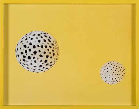 Elad Lassry - C-print Edition 3/5 + 2 AP 11.5 × 14.5 David Kordansky Gallery, Los Angeles