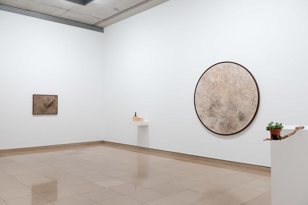 Davide Balula. courtesy D. Huguenin - Marcel Duchamp Prize