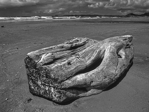 """Strandmarker"" Photo 1986 - Print 2006 - Format (cm) 30 x 40 - Edition 12 - Order No.SEE 11"